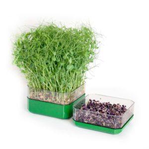 Stapelbar odlingslåda Grön