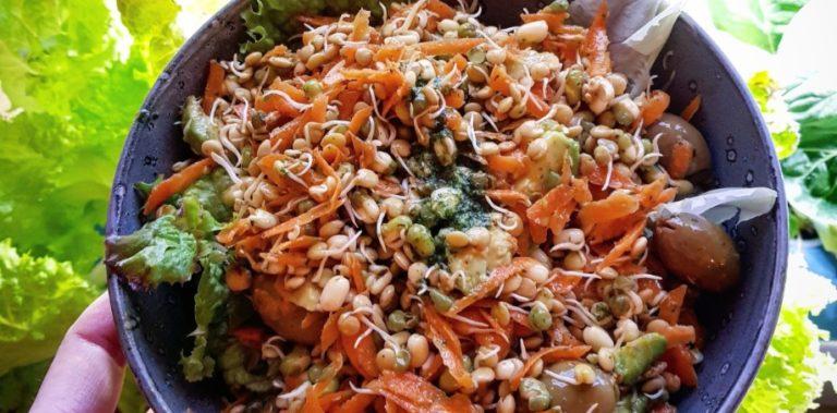 Fiberrik groddsallad med avokado och basilikadressing